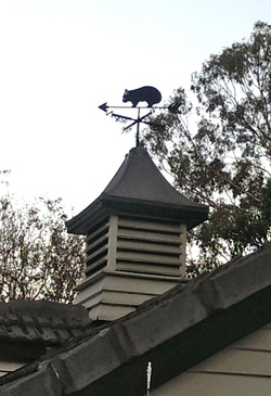 metal art weather vane on roof